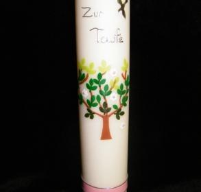 TA (267)